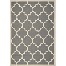Courtyard Anthracite/Beige Outdoor/Indoor Area Rug