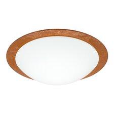 Ring 1 Light Flush Mount