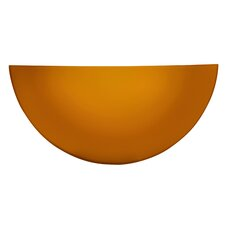 Indoor 1 Light Wall Sconce