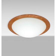 Ring 3 Light Flush Mount