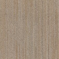 "Plymouth 24"" x 24"" Carpet Tile in Living Fast"