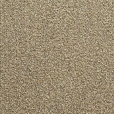 "Conway 24"" x 24"" Carpet Tile in Bamboo Sprout"