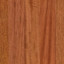 "Elysia 3-1/4"" Engineered Brazilian Cherry Hardwood Flooring in Natural"