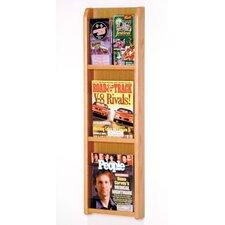 3 Magazine / 6 Brochure Wall Display