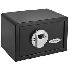 Mini BioMetric Key Lock Wall Safe