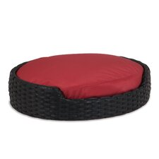 Poly Wicker Dog Bed with Cushion