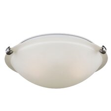 2 Light Ceiling Flush Mount