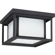 Hunnington 2 Light Flush Mount