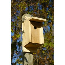 Eastern Blue Bird Birdhouse