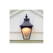 Homestead 4 Light Outdoor Wall Lantern