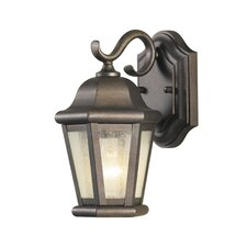 Martinsville 1 Light Outdoor Wall Lantern