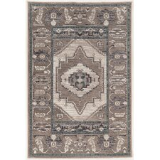 Ivory/Gray Area Rug