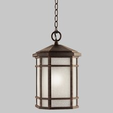 Cameron 1 Light Outdoor Hanging Lantern