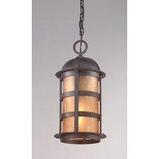 Aspen 1 Light Outdoor Hanging Lantern