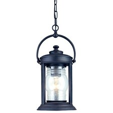 Station Square 1 Light Outdoor Hanging Lantern
