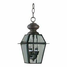Duvall 2 Light Outdoor Hanging Lantern