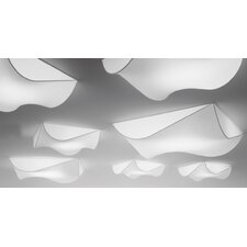 Stormy Ceiling Light / Wall Sconce (Fluorescent)