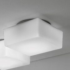 Quadris 1 Light Outdoor Flush Mount