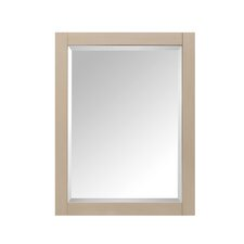 14000 Mirror Wall Mounted Cabinet