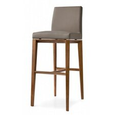 "Bess 31.5"" Bar Stool with Cushion"