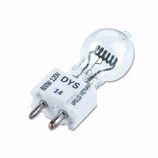 120-Volt Light Bulb