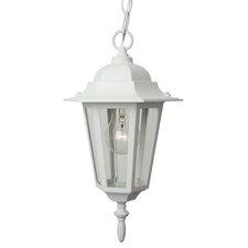 Straight Glass 1 Light Outdoor Hanging Lantern