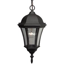 Curved Glass 1 Light Outdoor Pendant