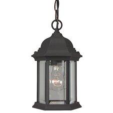 Hex Style 1 Light Outdoor Hanging Lantern