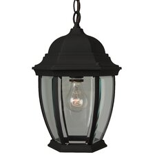 French Country 1 Light Outdoor Hanging Lantern