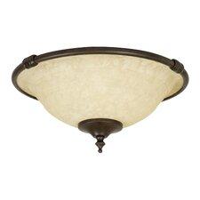 Economy 2 Light Bowl Ceiling Fan Light Kit