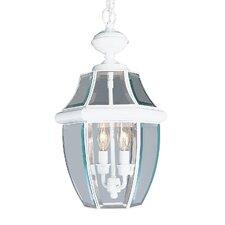Monterey 2 Light Outdoor Hanging Lantern