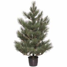 "60"" Ponderosa Pine Porch Tree"