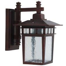 Dante 1 Light Outdoor Wall Lantern