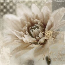 Revealed Artwork Blooming Softly II Graphic Art on Wrapped Canvas