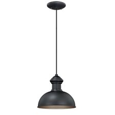 Franklin 1 Light Outdoor Pendant