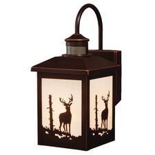 Bryce 1 Light Outdoor Wall Lantern