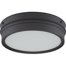 Ben 1 Light Flush Mount