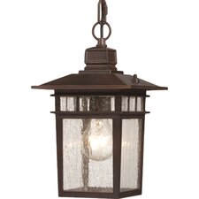 Cove Neck 1 Light Outdoor Hanging Lantern