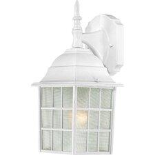 Adams 1 Light Outdoor Wall Lantern
