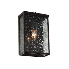 Mission You 1 Light Wall Lantern
