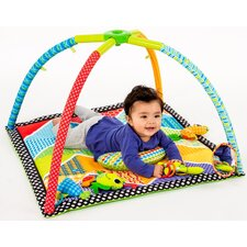 Pond Pals Twist And Fold Activity Gym And Play Mat