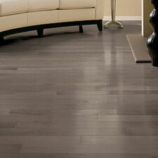 "Specialty 3-1/4"" Solid Maple Hardwood Flooring in Greystone"