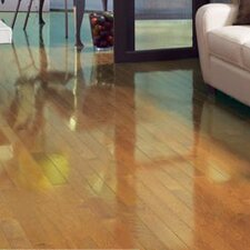"Color Strip 3-1/4"" Solid Red Oak Hardwood Flooring in Natural High Gloss"