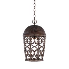 Amherst 1 Light Outdoor Pendant
