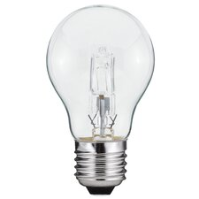 Halo+ E27 Halogen Light Bulb (Set of 24)