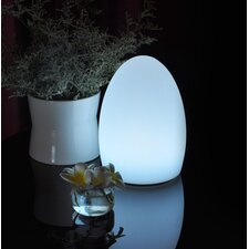 Egg LED Table Lamp