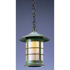Newport 1 Light Outdoor Hanging Lantern