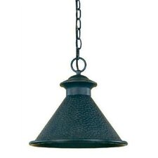 Dark Sky Essen 1 Light Outdoor Hanging Lantern