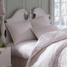 Astra Medium Innofil Pillow