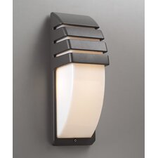 Synchro 1 Light Outdoor Flush Mount
